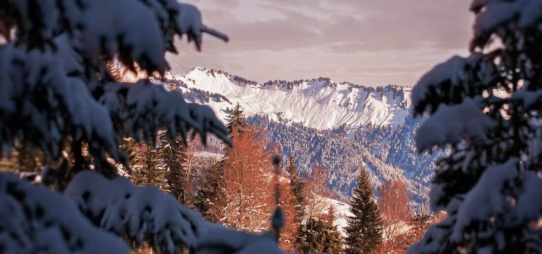 winter-1157433